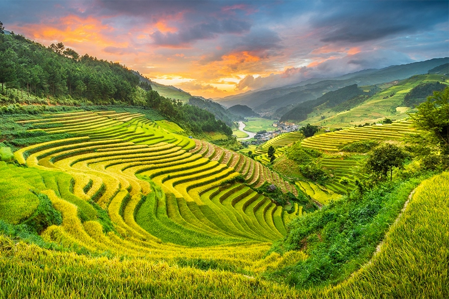 Terraced-fields-in-Tu-Le