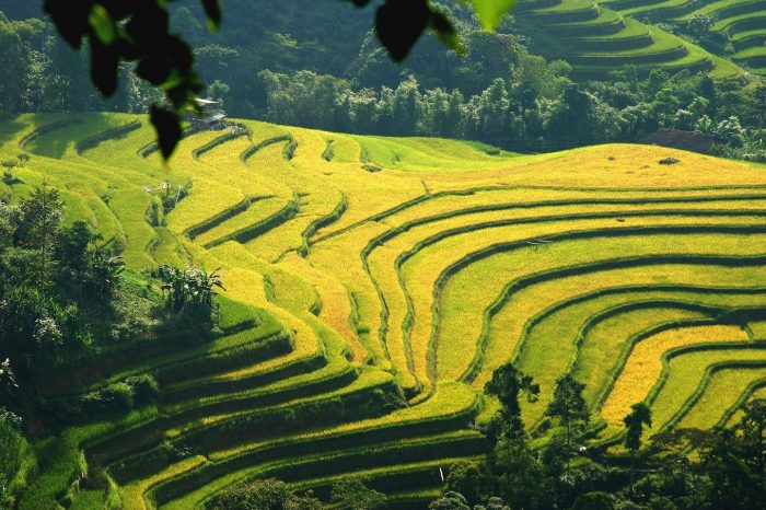Northwest Vietnam Adventure Tour 12 Days/ 11 Nights