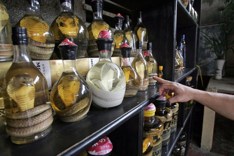 Have a shot of snake wine in Le Mat